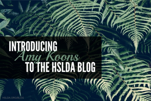 Amy Koons INTRO Post - HSLDA Blog - header
