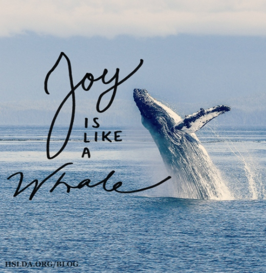 BLG SZ - Joy is Like a Whale - RR - HSLDA Blog
