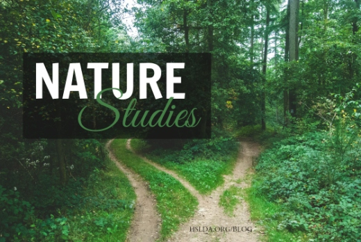 BLG SZ - Nature Studies - CB - HSLDA Blog