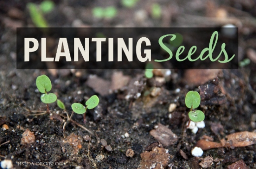 BLG SZ - Planting Seeds header - JC - HSLDA Blog