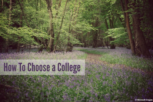 How We Chose a College -  HSLDA BLOG