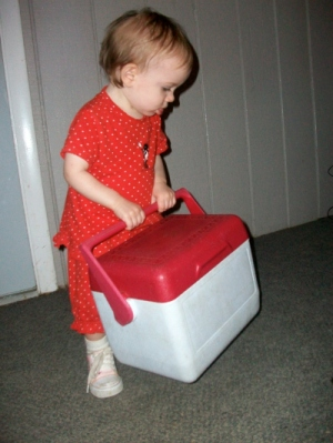 The Challenge With Chores -2  RF - HSLDA Blog