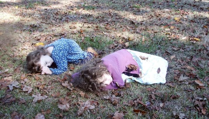 Why Did You Choose To Homeschool? | HSLDA Blog