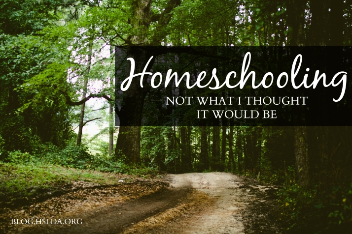 Not What I Thought It Would Be | HSLDA Blog
