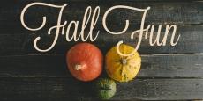 Fall Fun | HSLDA Blog