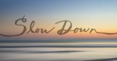 Slow Down | HSLDA Blog