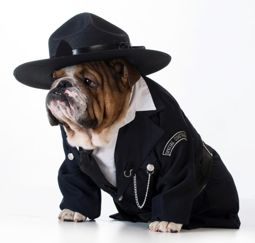 bigstock-police-officer-or-dog-catcher--87143240.jpg