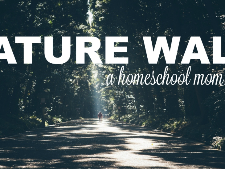 Nature Walk: A homeschool mom's break | HSLDA Blog
