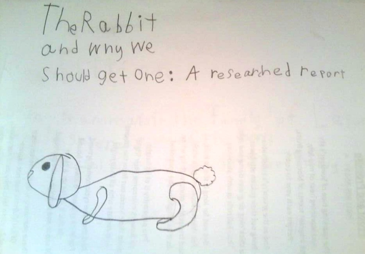 A Tale of a Rabbit   HSLDA Blog