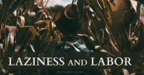 Laziness and Labor | HSLDA Blog