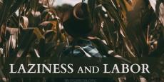 Laziness and Labor | HSLDA Blog