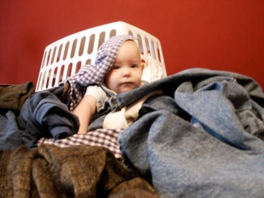 Laziness and Labor 2 - Rose Focht - HSLDA Blog