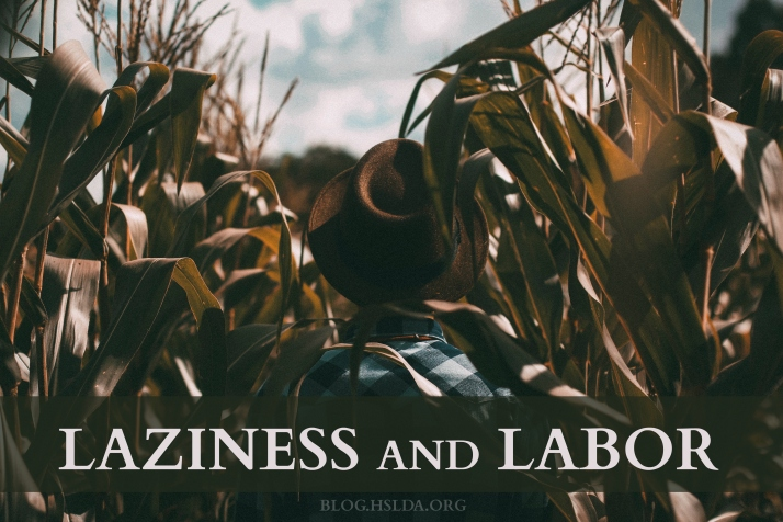 OR - Laziness and Labor - Rose Focht - HSLDA Blog.jpg