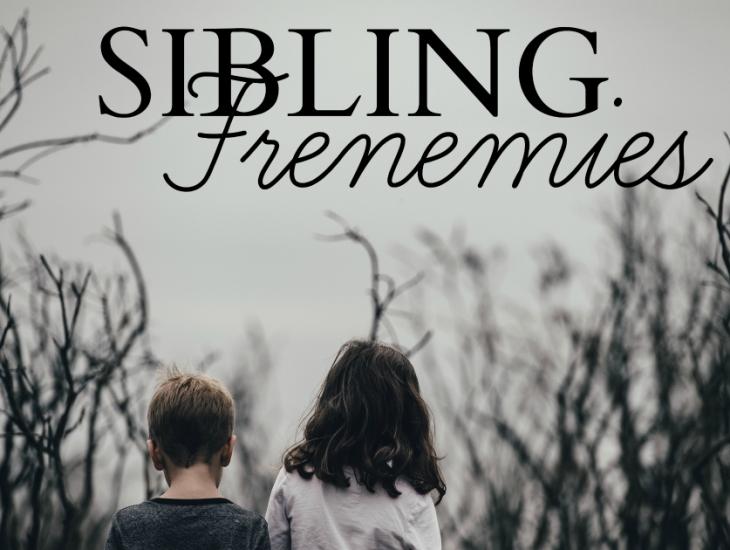 Sibling Frenemies | HSLDA Blog