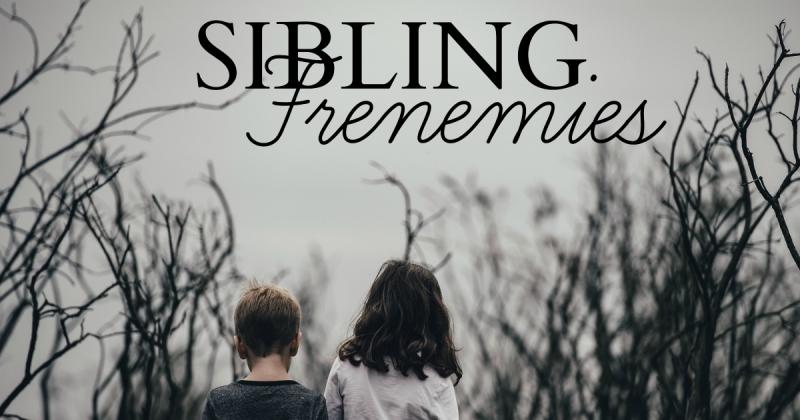 Sibling Frenemies   HSLDA Blog