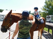 My Daughters Should Thank C.S. Lewis for Their Riding Lessons | HSLDA Blog