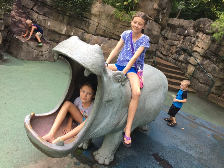 Wrapping up the Summer: St. Louis on the Cheap | HSLDA Blog