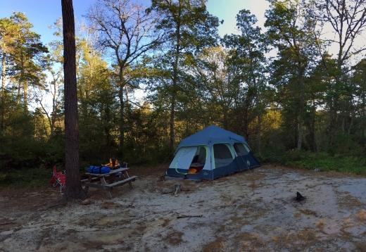 History and Camping | HSLDA Blog