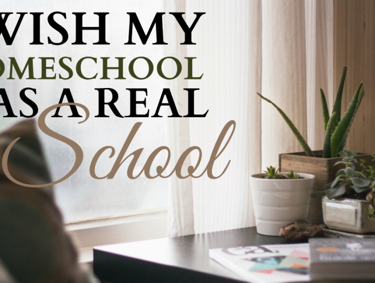 I Wish My Homeschool Was a Real School | HSLDA Blog