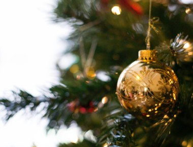 Deck the Halls with...Self-Consciousness | HSLDA Blog