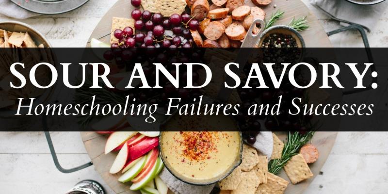 blg-sz-sour-and-savory-homeschooling-failures-and-successes-sj-hslda-blog