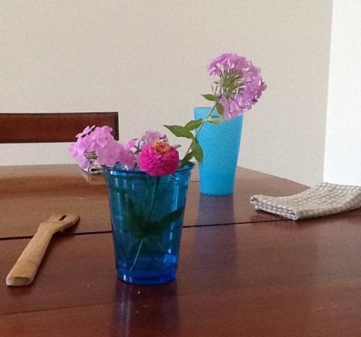 Good Clean Fun 2 - RF - HSLDA Blog