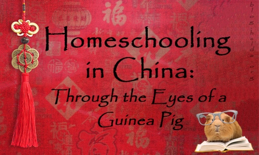 Homeschooling in China_Another Draft.jpg