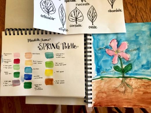 Art Classes and Nature Journaling_Edited.jpg
